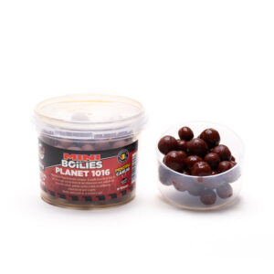 Boilies Planet1016 8 & 10mm in dip 50gr by Accesfishing