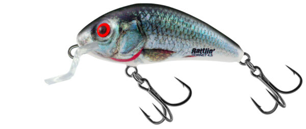 Vobler Salmo Rattlin Hornet Shallow Holographic Real Dace