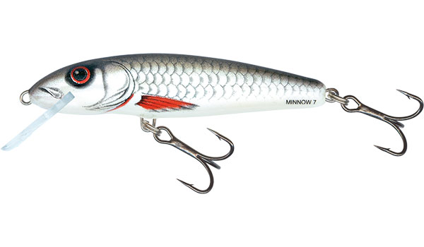 Vobler Salmo Minnow Floating Dace 7cm