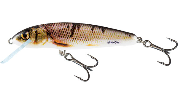 Vobler Salmo Minnow Floating Wounded Dace 5cm